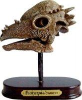 spiegelburg ausgrabungsset dinoschädel...